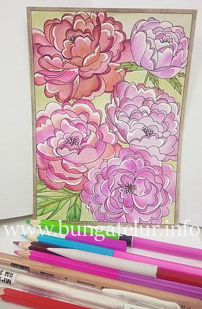 colleen-coloring-postcard-peonies